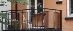 balkongteam-350x150