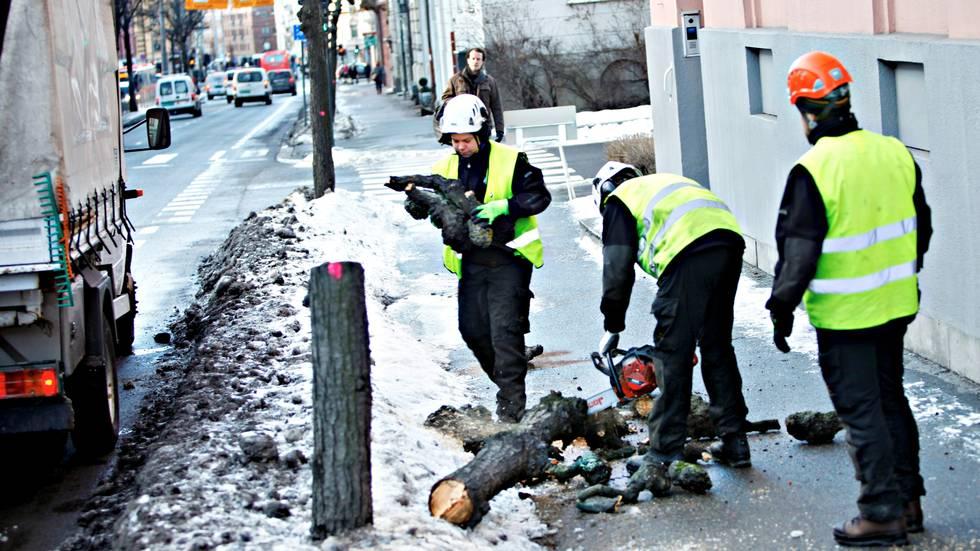 Foto: Osloby/ Rolf Øhman